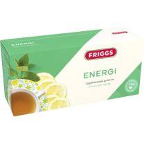 Friggs Te Energi